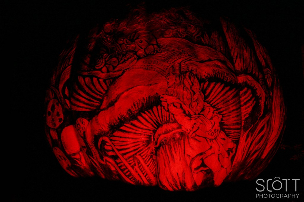 Alice in Wonderland Pumpkin Carving Ideas Alice in Wonderland Pumpkin Carving Jack o Lantern Spectacular 2014