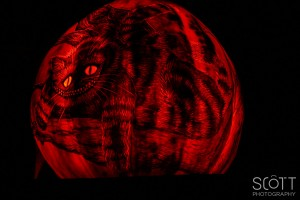 Cheshire Cat Pumpkin Carving - Jack-O-Lantern Spectacular - Roger Williams Park Zoo - 2014
