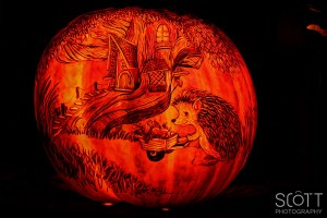 Porcupine Pumpkin Carving - Jack-O-Lantern Spectacular - Roger Williams Park Zoo - 2014
